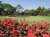 Durban-Botanic-Gardens-sunken-water-gardens-6