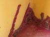 cato-manor-2nd-river-umbilo-shree-ambaavaanar-alayam-1875-890-belair-road-benham-road-s-29-52-35-e-30-57-36-elev-34m-83