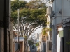 Durban - Greyville Campbell lane
