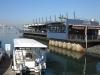 durban-harbour-catalina-theatre-s29-52-954-e31-00-922-elev9m-1