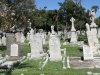 Durban - West Street Cemetery - Graves Nicoll Grifffiths