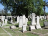Durban - West Street Cemetery - overview