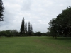 Durban Country Club - Course Photos (6)