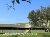 Durban DUT Campus Alan Pittendrigh Library & Art Gallery) (7)