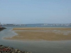 Durban Harbour - Container Terminal - low tide from Embankment (1)