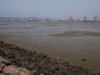 Durban Harbour - Container Terminal - low tide from Embankment (7)