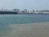 Durban Harbour - Harbour - Ro Ro ship - Osaka Car (2)