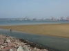 Durban Harbour - low tide views (4)