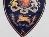dhs-deo-tretus-badge