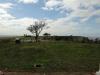 Inanda - Intafaleni - Ntatshakuza Resort - D720 Farm House (64)