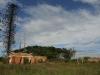 Inanda - Intafaleni - Ntatshakuza Resort - D720 Farm House (72)