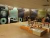 Inanda - Phoenix settlement - Museum - Displays (3)
