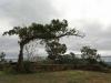 Inanda - Ohlanga Institute - Monument - General view (2)