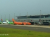 Durban - King Shaka Airport terminals (2)