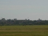 durban-international-louis-botha-take-offs-landing-5