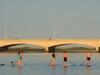 Kingfisher Canoe Club - SUP Dice (4)
