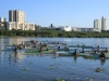 Kingfisher Canoe Club Thursday Dice  (4)