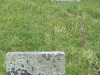 Malvern-Civil-Cemetery-Grave-Norman-Dennis-Snnedon90