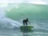 Marine Surf Lifesaving Club - Surfers (4)