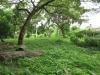 hillary-family-graves-end-coronation-road-s-29-53-15-e-30-55-11