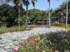 morningside-nimmo-road-mitchell-park-flowers-entrance-s-29-49-531-e-31-00-633-9