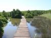 Beachwood Mangroves - Mouth closed - flooded boardwalks (13)