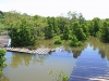 Beachwood Mangroves - Mouth closed - flooded boardwalks (17)