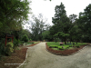 Durban - Japanese Gardens (10)