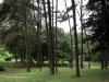 Durban - Japanese Gardens (13)