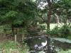 Durban - Japanese Gardens (19)