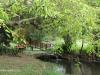 Durban - Japanese Gardens (22)