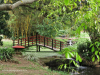 Durban - Japanese Gardens (23)