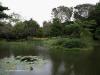 Durban - Japanese Gardens (29)