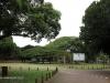 Durban - Japanese Gardens (4)