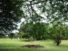 Durban - Japanese Gardens (41)