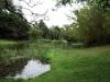 Durban - Japanese Gardens (42)