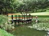 Durban - Japanese Gardens (43)