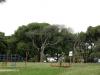 Durban - Japanese Gardens (49)