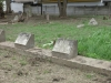 effingham-prince-mhlangana-rd-s29-45-41-e-31-01-ruston-family-graves-2