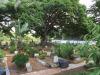 Durban-North-Muslim-Cemetery-Graveyard-overview18