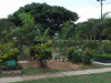 Durban-North-Muslim-Cemetery-Graveyard-overview19