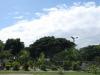 Durban-North-Muslim-Cemetery-Graveyard-overview22