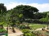 Durban-North-Muslim-Cemetery-Graveyard-overview23