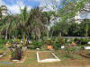 Durban-North-Muslim-Cemetery-Graveyard-overview26
