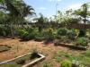 Durban-North-Muslim-Cemetery-Graveyard-overview28