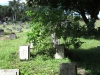 Redhill Cemetery - Chinese Merchant Navy Graves - WWII (5)