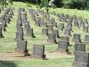 Redhill Cemetery - Jewish Grave views (1)