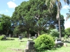 Redhill Cemetery - Military - Grave  views - S 29.46.31 E 31.01 (8)
