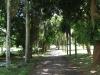 Redhill Cemetery Views (6)