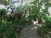 durban-old-fort-gardens-defensive-earthworks-2